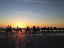 Broome Sunset Camel Ride