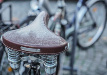 Saddle Frostbite During A Cold...