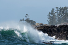 Wave Crashing On A Rocky Coastline In Big Beach, Ucluelet, Vancouver Island, BC Canada