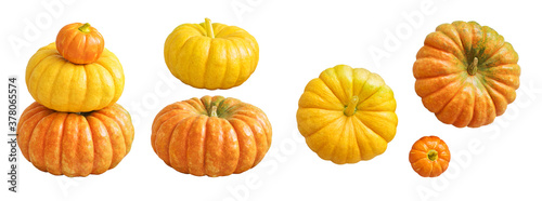 Natural pumpkin isolated on white background Canvas Print