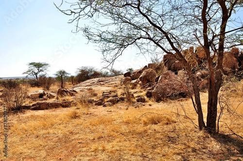 Widok w parku narodowym Samburu (Kenia)