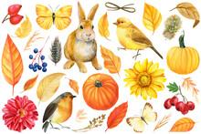 Watercolor Autumn Set, Pumpkin...