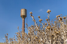 Dry Thistle And Old Water Tower As A Symbol Of Lack Of Water