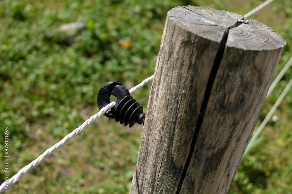 Fototapeta Isolateur annulaire d'une clôture électrique fixé sur un poteau en bois en gros plan