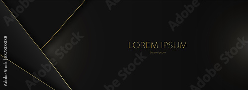 Obraz na plátně Luxury black and gold abstract background vector illustration