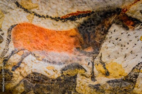 Fototapeta La Grotte de Lascaux IV