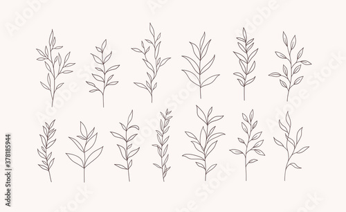 Slika na platnu Set of vector tree branches and leaves