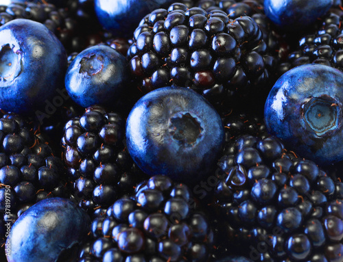 Photo Blueberry and Blackberry background