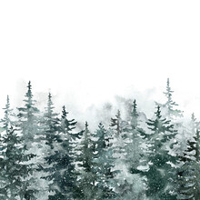Winter Snowy Forest Illustrati...