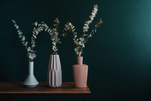 Still Life With Eucalyptus In Vases
