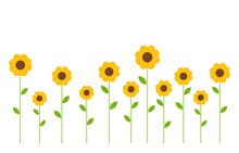 Cute Yellow Flowers Background.