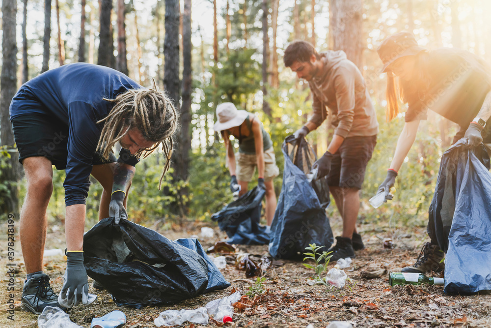 Fototapeta Young men and women picking up litter in forest