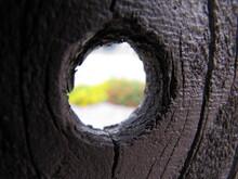 Knothole Peep