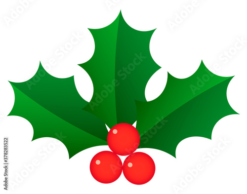 Holly berry vector illustration. ひいらぎ Canvas-taulu