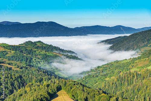 Fototapeta View of the mountain landscape and the mist-shrouded valley. Carpathians. obraz