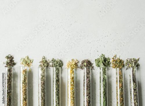 Fotografiet Various dry healthy herbs, plant flowers for brewing herbal tea in glass test tu
