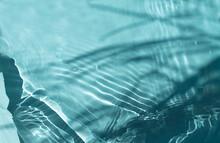 Natural Moisturizer Water Tone...