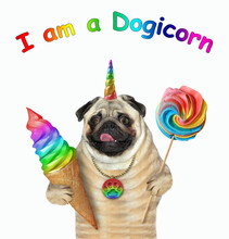 A Pug Unicorn Dog Is Holding A Ice Cream Cone And A Lollipop. I Am A Dogicorn. White Background. Isolated.