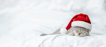 Tiny Kitten Wearing Red Santa's Hat Sleeps On A Bed At Home. Empty Space For Text