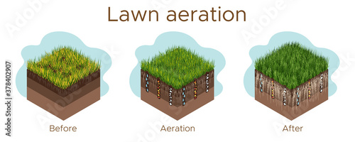 Lawn care - aeration and scarification Wallpaper Mural