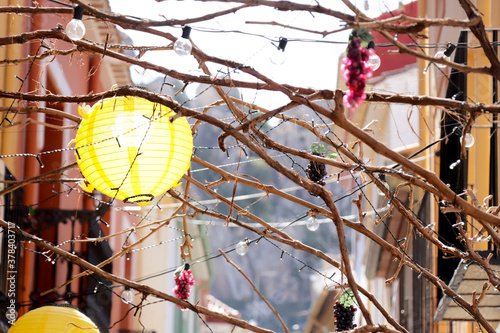 Fototapeta Beautiful shot of a paper lantern hanging on tree branches with light strings obraz