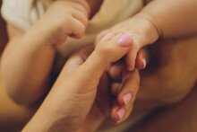 Parental Hand Holds A Palm Of ...
