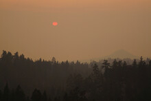 Very Hazy And Smokey View Over Lake Tahoe Near Sunset, During Wildfire Season, With Trees In The Foreground