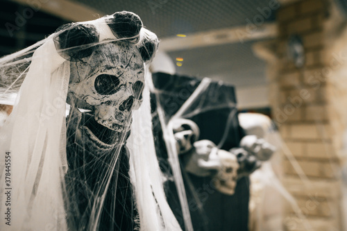 Close photo of a skeleton in a cobweb and dark clothes indoors Fototapeta