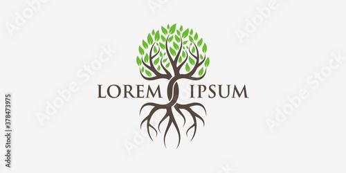 Fotografie, Obraz tree and roots logo design elements