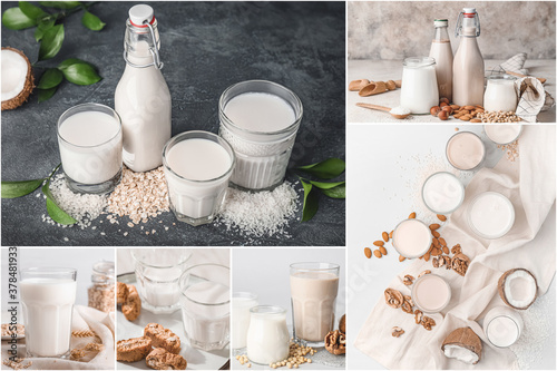 Fototapeta Collage of photos with different milk obraz