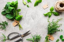 Fresh Herbs On Grey Concrete B...