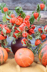 Bouquet of bright physalis in a jug on a wooden background with ripe orange pumpkins, close-up, autumn still life, vertical frame