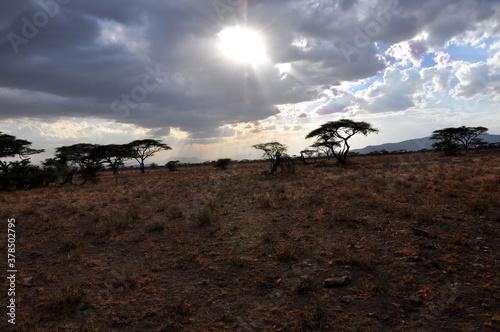 Wieczór w rezerwacie Buffalo Springs (Kenia)