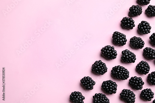 Fototapeta Tasty ripe blackberries on light pink background, flat lay. Space for text obraz