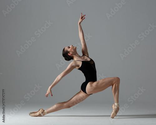 Valokuva Young beautiful ballet dancer is posing in studio