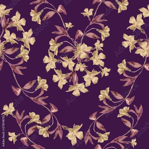 Fototapeta Watercolor  flowers  periwinkle on burgundy background