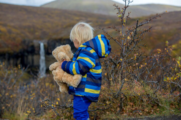 Happy toddler child, holding teddy bear, posing in front of beautiful waterfall Svartifoss in Skaftafell national park in Iceland