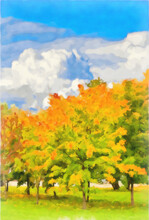 Watercolor Drawing. Autumn Maple Grove. Digital Painting - Illustration