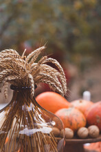 Ripe Ears Of Wheat In A Brown Glass Vase With Pumpkins Background, Toned