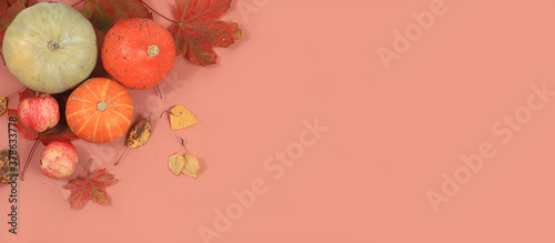 Fotografie, Obraz Autumn composition with seasonal leaves, pumpkins, apples on pastel background,