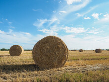 Large Yellow Rolls Of Hay On A Field Against A Blue Sky With Clouds.