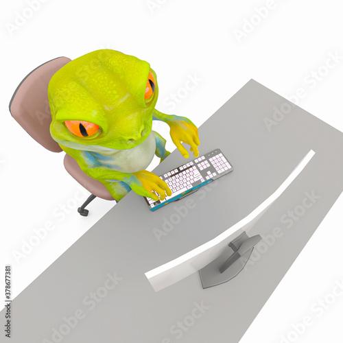 Fototapeta little frog cartoon is working on the computer top view obraz