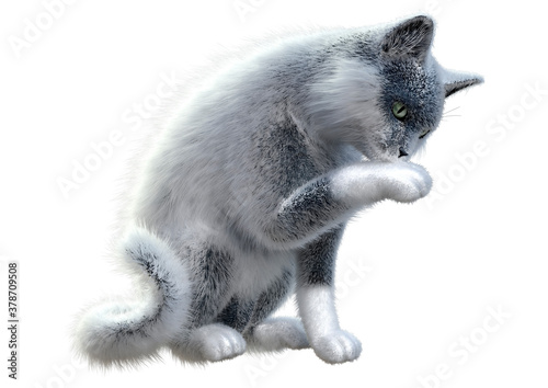3D Rendering Domestic Cat on White Fotobehang
