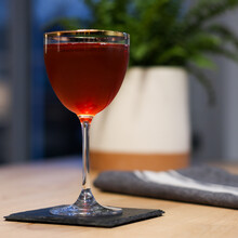 Elysian Cocktail In Nick & Nora Gold Rimmed Glass On Wood Table With Plant In Background With A Deep Red Color