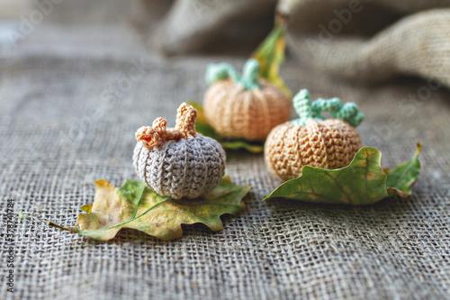 Fototapeta rural three crocheted handmade pumpkins on autumn oak leaves and bagging, selective focus, side view obraz