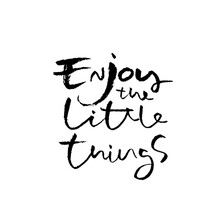 Enjoy The Little Things. Hand Drawn Modern Brush Lettering. Typography Banner. Ink Vector Illustration.