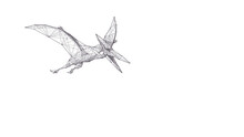 Abstract Flying Pterodactylus Dinosaur In White Background. Polygonal Sketch 3d Illustration Of Pterosaur Consists Of Black Lines, Dots And Triangles. Vector Animal Hand Drawing Concept