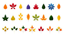 Fall And Autumn Leaves. Colorf...