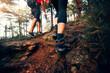 canvas print picture - Frau und Mann wandern durch den Wald am Osser