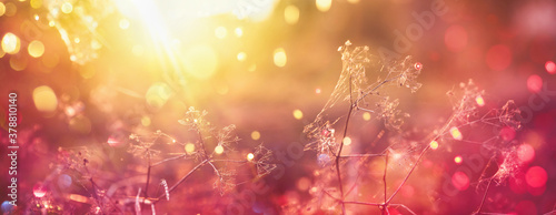 Blurred Bright Autumn Background Fotobehang